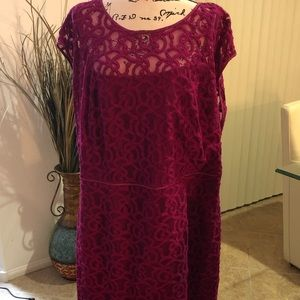 NWT Adrianna Papell Fuchsia lace dress size 22